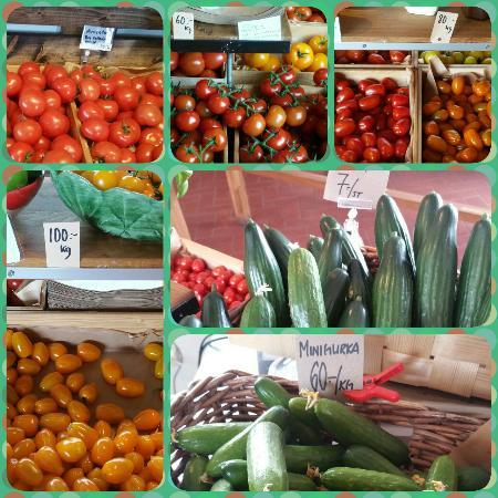 tomatens-hus